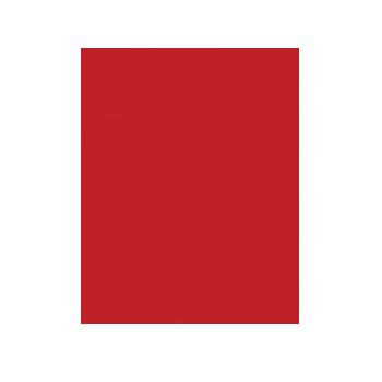 Bruno_vassari